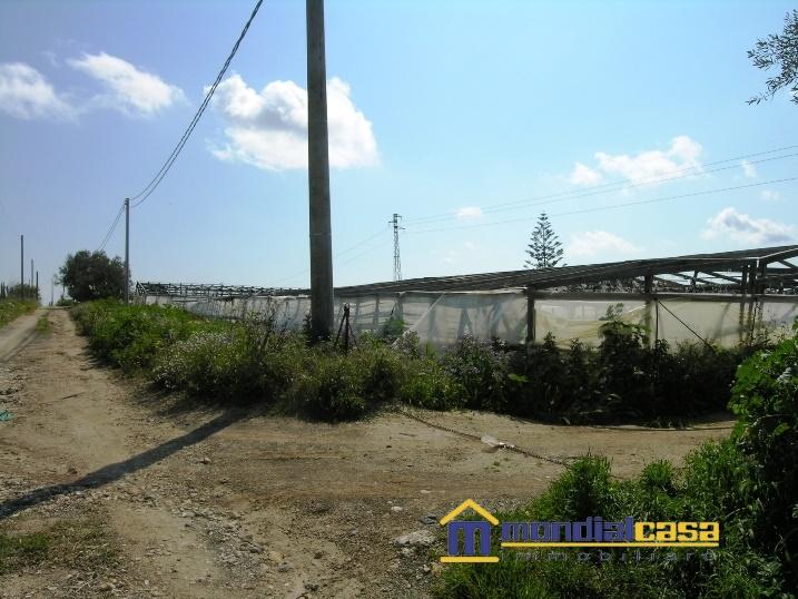 Azienda Agricola in vendita a Pachino, 3 locali, prezzo € 126.000 | PortaleAgenzieImmobiliari.it