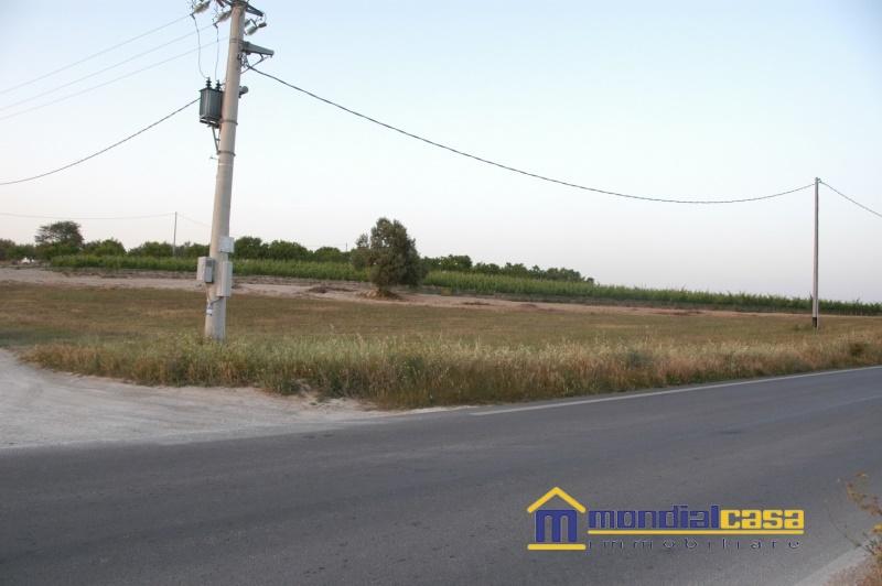 Azienda Agricola in vendita a Pachino, 9999 locali, Trattative riservate   CambioCasa.it