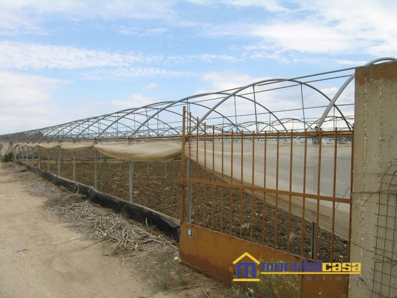 Azienda Agricola in Vendita a Pachino