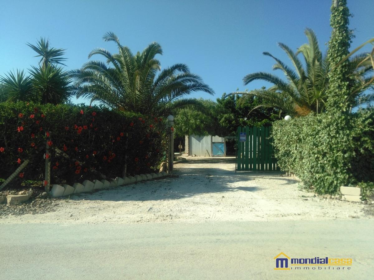 Azienda Agricola in vendita a Pachino, 1 locali, prezzo € 55.000   CambioCasa.it