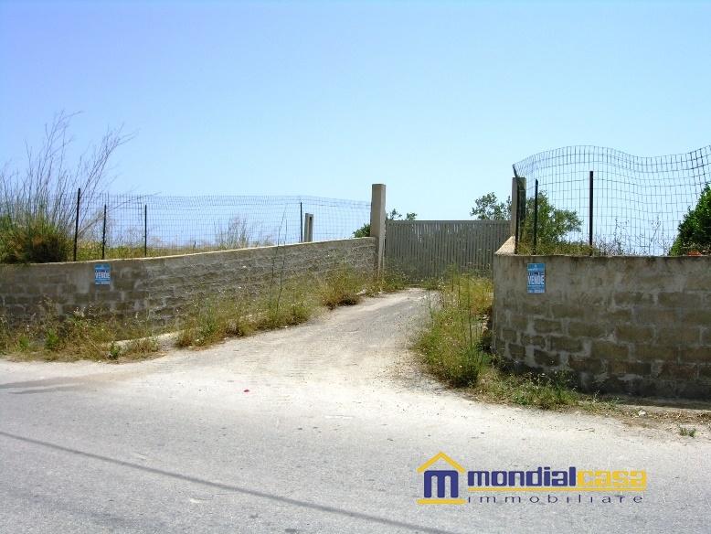 Azienda Agricola in Vendita a Noto