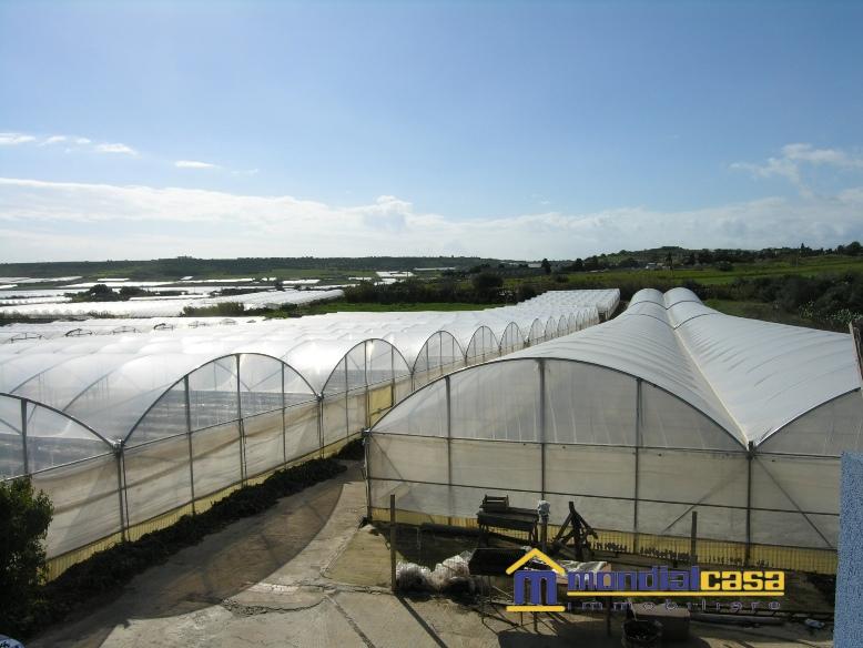 Azienda Agricola in vendita a Pachino, 3 locali, prezzo € 140.000 | PortaleAgenzieImmobiliari.it